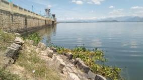 flood-alert-in-vaigai-dam