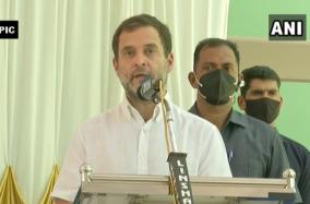 we-need-fearless-people-congress-leader-rahul-gandhi-at-party-s-sm-dept-meet