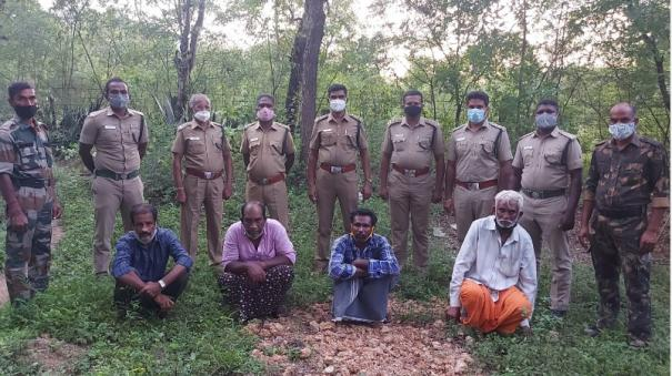 4-fined-rs-40-000-for-attempting-to-cut-sandalwood-near-coimbatore