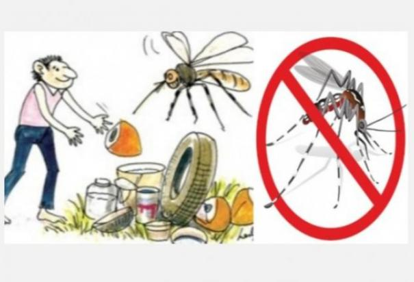 full-cooperation-of-the-public-is-required-to-eradicate-dengue-chennai-corporation-demand