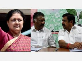 case-against-aiadmk-general-committee-sasikala-files-new-amendment-petition