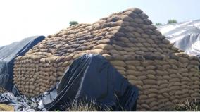accumulation-of-3-lakh-unsecured-paddy-bundles-near-arakkonam-demand-to-start-a-modern-rice-mill-with-warehouse