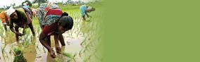farmers-problem