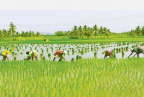 the-federal-government-reducing-its-share-in-crop-insurance-will-continue-to-work-for-farmers