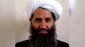 taliban-chief-may-be-in-pak-army-custody-sources-cite-foreign-intel