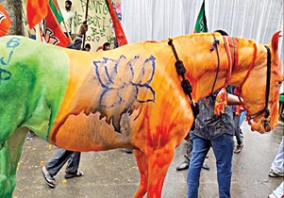 horse-painted-by-bjp