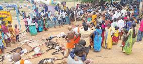 manamadurai-ayyanar-kovil