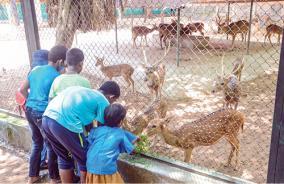 vandaloor-zoo-opened