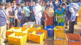 350-kg-of-formalin-fish-seized-from-trichy-fish-market-people-are-shocked