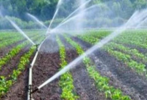 first-time-in-tamil-nadu-micro-irrigation-facility-with-well-and-motor-at-100-subsidy-for-sc-and-st-farmers