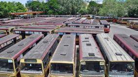 special-buses-for-50-places-in-chennai