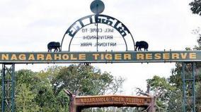 rajiv-gandhi-nagarhole-national-park