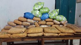 incident-beyond-cinema-police-nab-9-people-who-came-with-120-kg-of-cannabis
