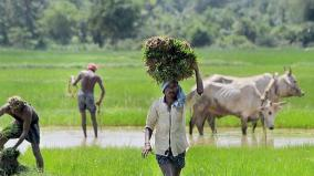 indian-farmers-in-debt