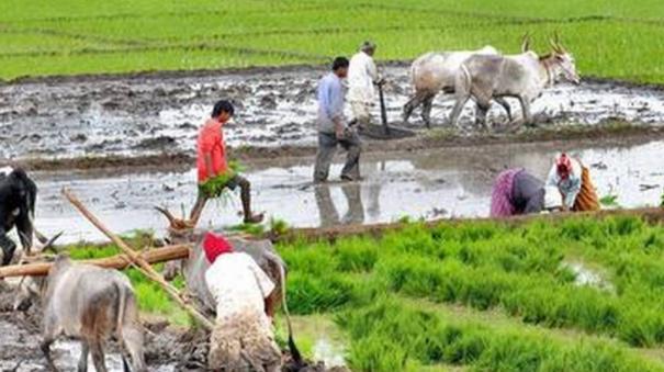 agri-employment