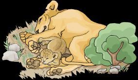 lion-story