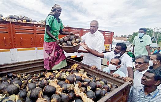 appavu-donates-1-lakhs-palm-seeds-to-government