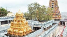 tirupathi-temple-brammorsavam
