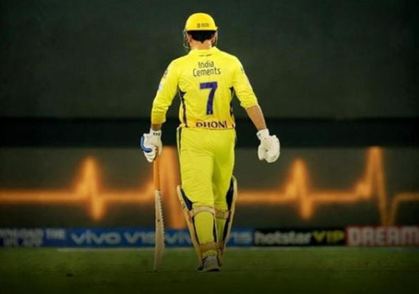 i-think-ms-dhoni-is-going-to-retire-from-ipl-cricket-at-the-end-of-the-year-brad-hogg