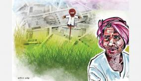 india-towards-agriculture