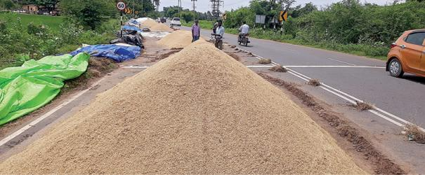paddy-purchasing-centres