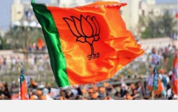 bypolls-bjp-wins-22-zilla-parishad-seats-mva-tally-at-46-cong-shines-in-panchayat-samitis
