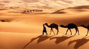 sahar-desert