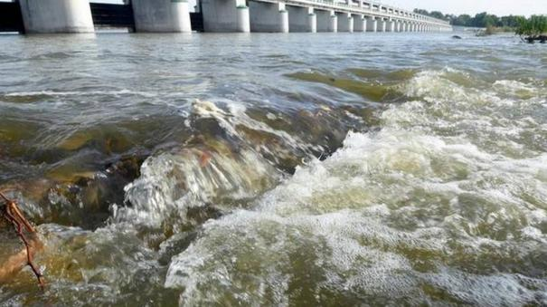 five-committees-set-up-to-monitor-pollution-in-cauvery