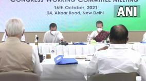 i-m-full-time-hands-on-congress-president-sonia-gandhi-s-message-to-g23-at-cwc-meet