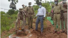 police-lose-5-000-palm-seeds-in-five-hours-planted-in-the-distance