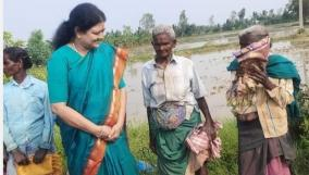 sasikala-visited-women-who-had-planted-paddy-near-thanjavur-and-inquired-about-their-health